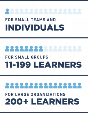Learner Group SIze Infographic